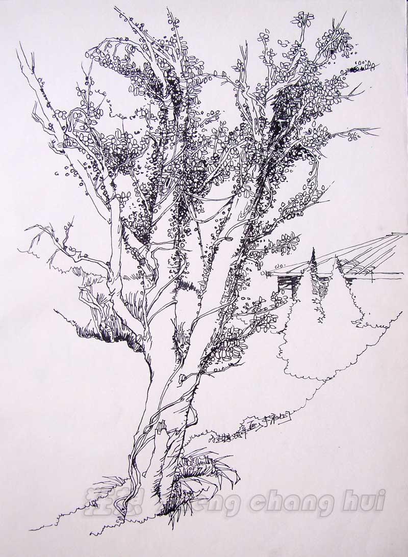 论坛 69 设计·创作区 69 手绘交流 69 长沙的小弟拜山来拉.