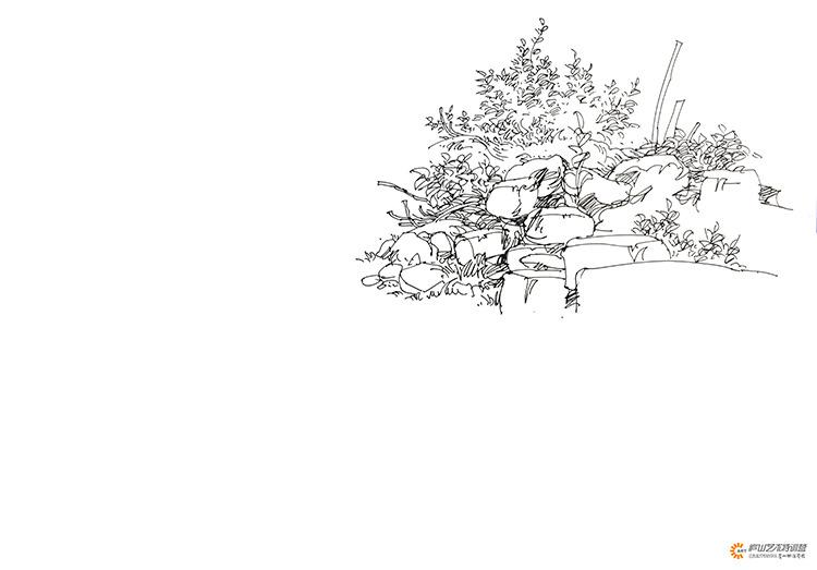 夏克梁老师植物组合钢笔表现 庐山手绘教师作品 Powered by Discuz